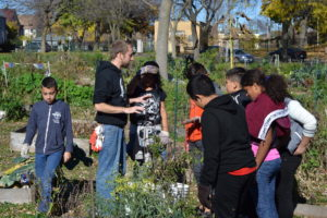 DeMarsh explains what to pull out from the garden beds.