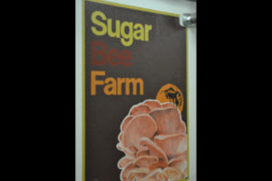 Sugar Bee Farm.